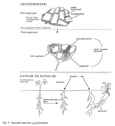 Figur 3: Organisk materiale og jordstruktur. Foto: Bibbi Thorbjørnsen