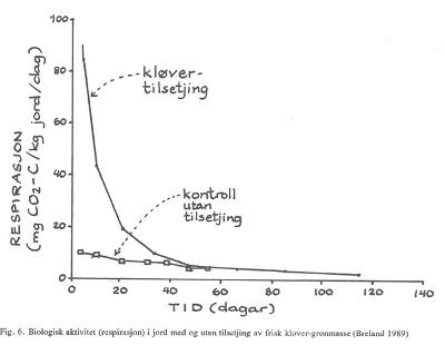 Figur 6: Biologisk aktivitet (respirasjon) i jord med og utan tilsetjing av frisk kløver-grønmasse. Foto: Breland, 1989