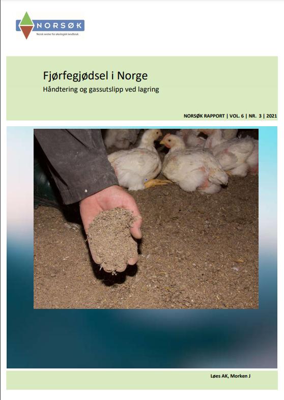 Fjørfegjødsel I Norge Rapport