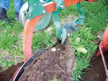 Forplogen skjærer av en trekant av velta. Dermed begraves de grønne plantedelene, og pila viser hvordan høymola er blitt «halshogd». Foto: Lars Olav Brandsæter