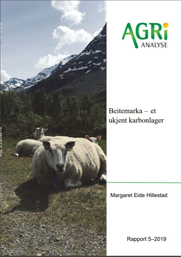 Beitemarka Ukjent Karbonlager Publikasjon