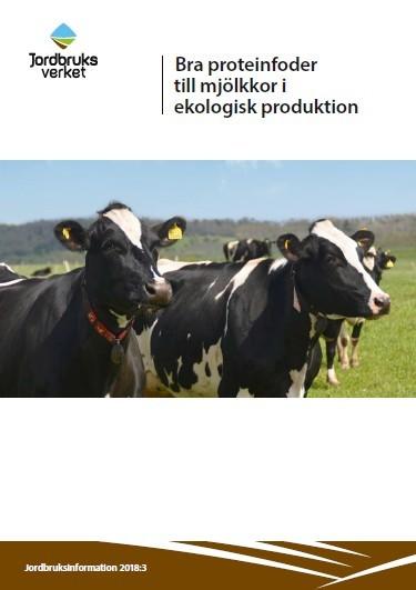 Bra Proteinfor Til Melkekyr Rapport