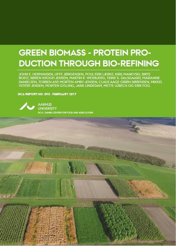 Rapport Green Biomass