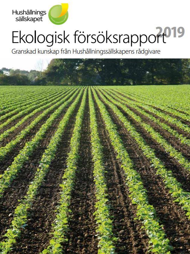 Rapport Svenske Prosjektet 2019