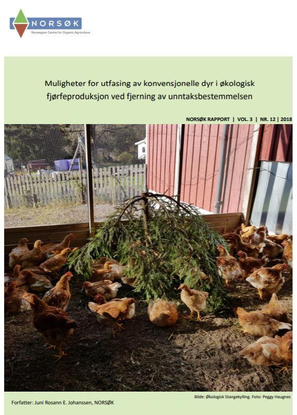 Utfasing Av Konvensjonelt For Rapport