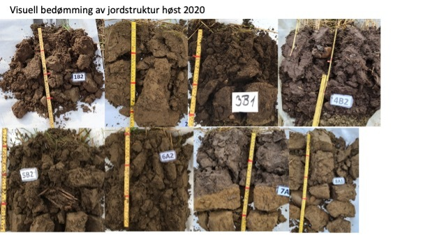 Visuell Bedømming Jordstruktur Karbon Til Bondens Beste