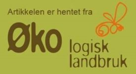 Annonse Økologisk Landbruk