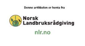 Annonse Nlr