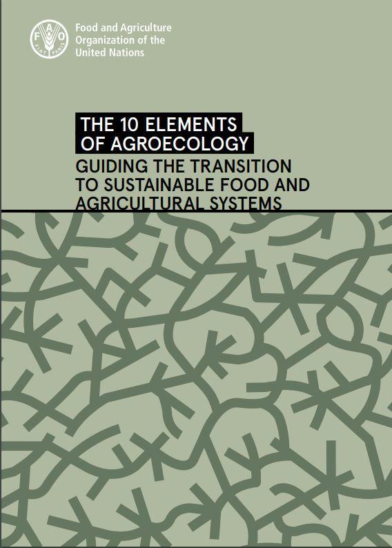 Agroøkologi