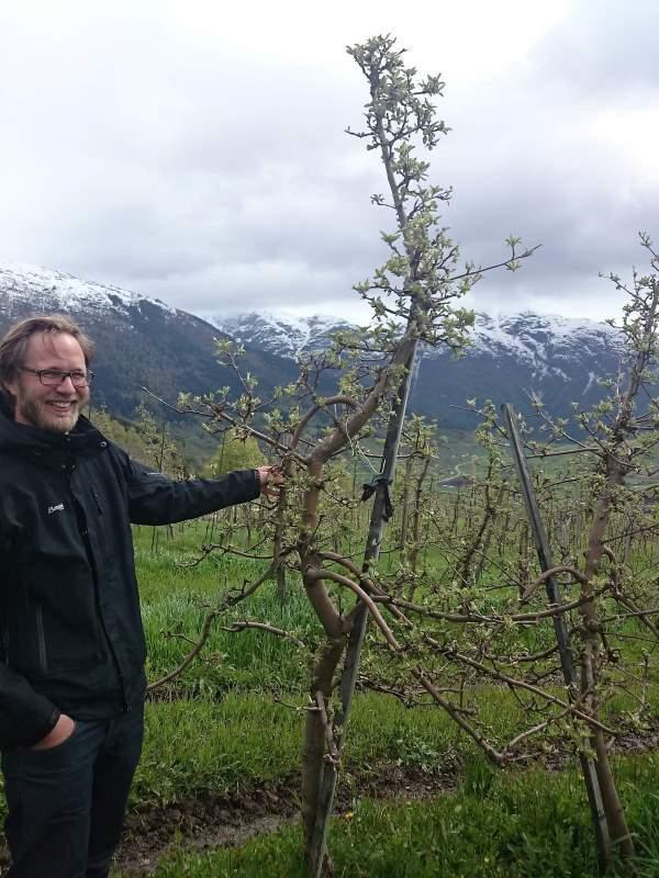Vi må ta ansvar, dyrke og levere norske økologiske varer, sier Djonne