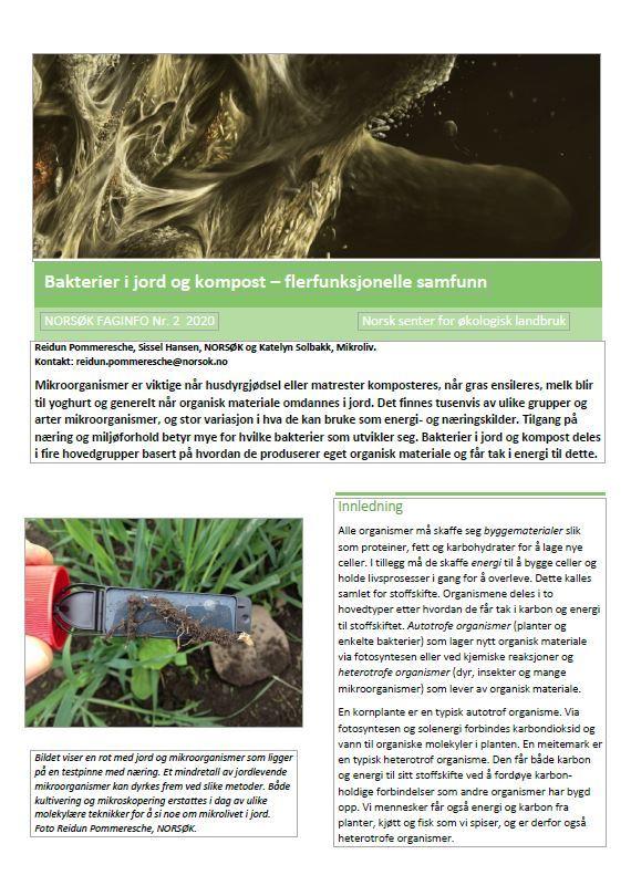 Trykk på bildet og les rapporten som pdf