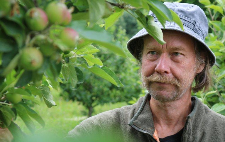 Olav Jønsi er fornøyd med sesongen så langt, og tror det kan bli en god fruktavling i år. Foto: Ole Engen