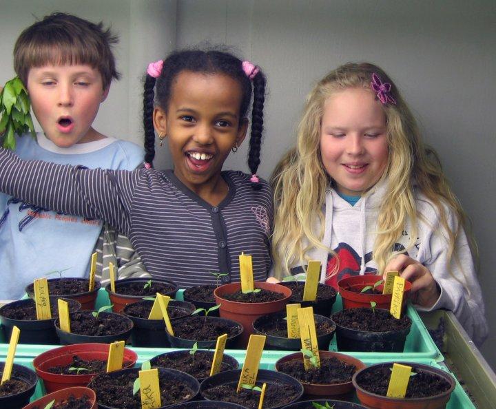 """""""Vi passer på at plantene har nok lys og fuktighet. Kanskje hjelper det å synge for plantene også?"""". Foto: Kirsty McKinnon"""