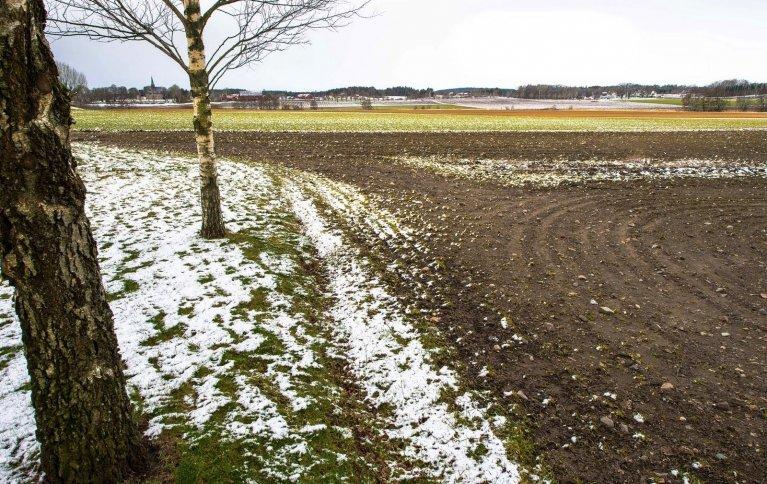 Pløyd landbruksjord. Driftsmåte har innvirkning på hvor mye karbon jorda klarer å lagre. Foto: Debio Norge