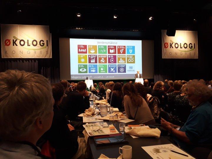 I Danmark har i tillegg organisasjonen Landbrug og Fødevarer utviklet en 10-punktsplan for videreutvikling og dynamikk i økologien. Foto: Marte Guttulsrød