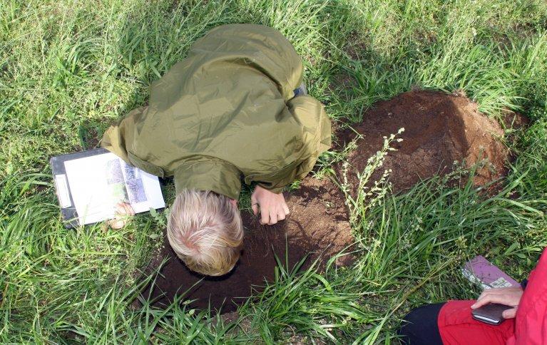 Hvordan er strukturen i jorda di? Grav et hull i bakken, og kikk nedi. Foto: Kari Bysveen
