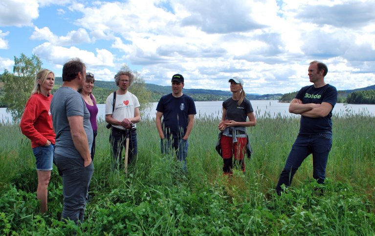 Forskere, rådgivere og bønder var samla for å vurdere hvordan det som var tilført jorda på ulike skifter hadde virket. Foto: NORSØK