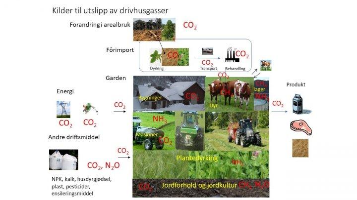 Drivhusgasser Illustrasjon Sissel