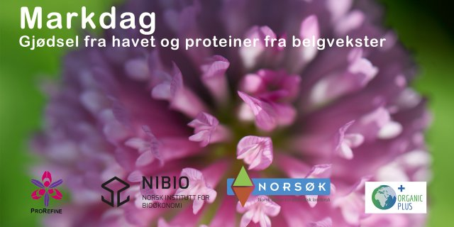 Markdag Kløver Og Fiskegjødsel 1080 Jpg