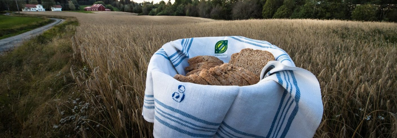 Bruk av lokale og fornybare ressurser, resirkulering av næringsstoffer og oppbygging av organisk materiale i jord kan redusere jordbrukets utslipp av klimagasser. Foto: Debio