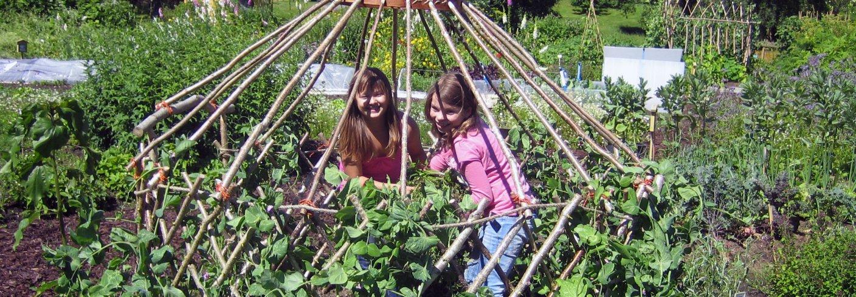 Mye fint og nyttig til skolehagen kan lages i kunst og håndverkstimene, for eksempel insekthotell, gjerde og portal flettet av pil og et telt som ertene kan vokse på. Foto: Kirsty McKinnon