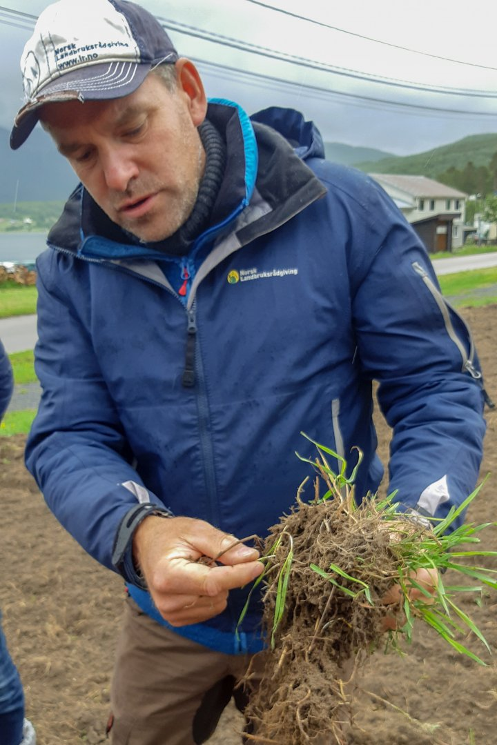 Rådgiver Thomas Holz i NLR Øst gir mange gode råd om grønnsaksdyrkinga. Her forklarer han hvordan man skal bli kvitt kveka. Foto: Ingrid Myrstad
