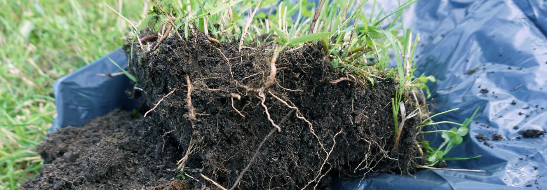 KARBONLAGRING I JORDBRUKSJORD: Mer mold i jorda betyr økt karbonlagring. Mer mold i jorda gir også bedre jordkvalitet til bondens beste. Foto: Reidun Pommeresche