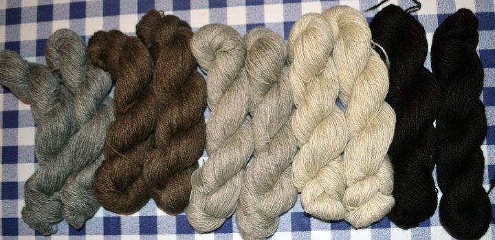 Garn fra sauene til Arnar Lyche sortert i fem farger og leiespunnet ved Selbu Spinneri AS. Foto: Arnar Lyche