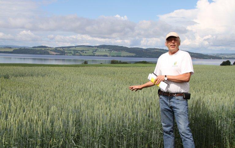 Jon Arne Dieseth, mannen bak kornsorter som Seniorita og Mirakel, mener at landbruket vil tjene på å ta vare på gener fra gamle kornsorter, men også å kombinere disse med nye, for landbruket er avhengig av at foredlere utvikler nye sorter. Foto: Eva Pauline Hedegart