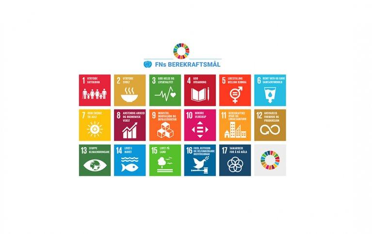FNs bærekraftsmål beskriver 17 dimensjoner som de fleste land bruker som veikart i arbeidet med framtidig bærekraft.