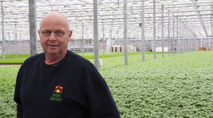 Erik Rosnes har måttet bruke dansk kompetanse for å få god nok jord til urtene han dyrke i drivhusa sine. De produserer urter hele året i de 10 mål store drivhusa. Foto: Anita Land