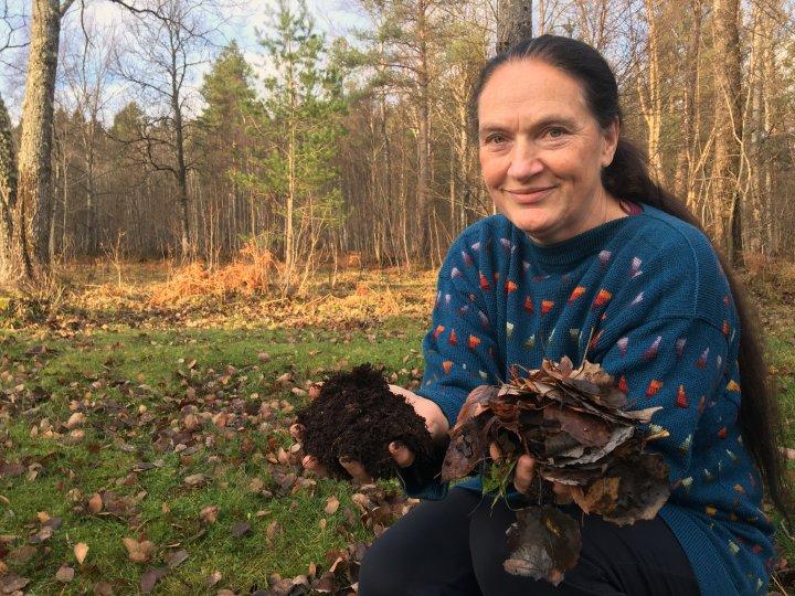 Lauv fra trær, blir god jord viser rådgiver Kirsty McKinnon som blir like fasinert hvert år, selv etter mer enn 30 med faget. Foto: Anita Land