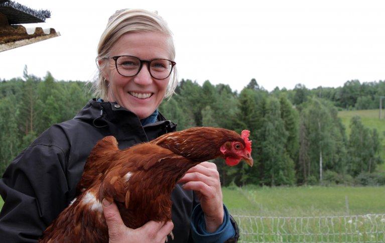 Mari Sandsund har 70 lykkelige og supertamme høner som flytter rundt i de «grønne enger». Foto: Anita Land