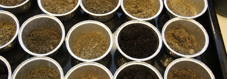 Representative jordprøver skal tas hvert 4.-8. år, og det skal minimum rekvireres analyser for pH, fosfor, kalium, glødetap eller gis skjønnsmessig vurdering av moldinnhold. Jordprøvene skal analyseres ved et laboratorium som har deltatt i og har bestått ringtest for jordanalyser. Foto: Anita Land