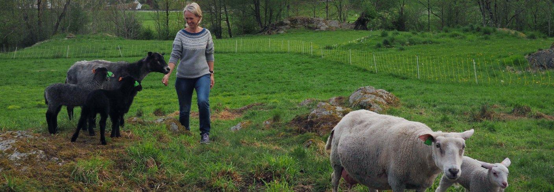 Kjersti Berge er fagkoordinator økologisk i Norsk Landbruksrådgiving (NLR) og leder av hovedkomiteen for Øko 2020. Foto: Ronja Svenning Berge
