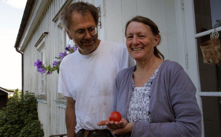 Asbjørn Lavoll og Gjertrud Leinslie driver gården Nordre Sverdstad. Foto: Anita Land
