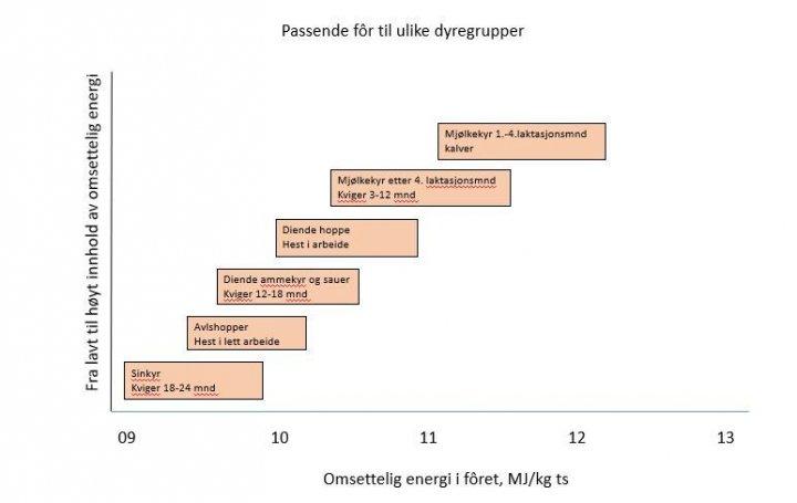 Oversikt over anbefalt energiinnhold til ulike dyregrupper. Fritt etter Hancock, 2011. Foto: Figuren er henta fra Spörndly sitt foredrag på Vallkonferens 2015.