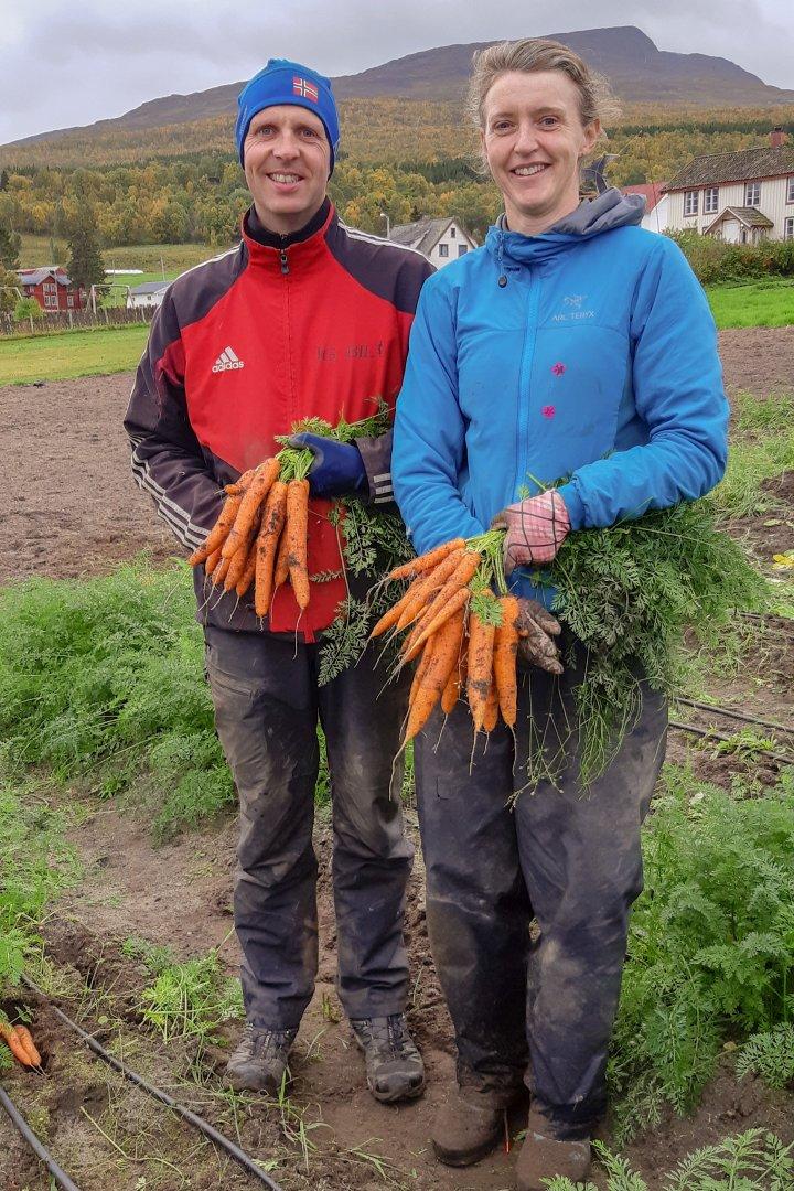 Odd Arne Johnsen og Signe Andreassen er fornøyd med årets avling og vil fortsette med gulrotdyrking til neste år. Foto: Ingrid Myrstad