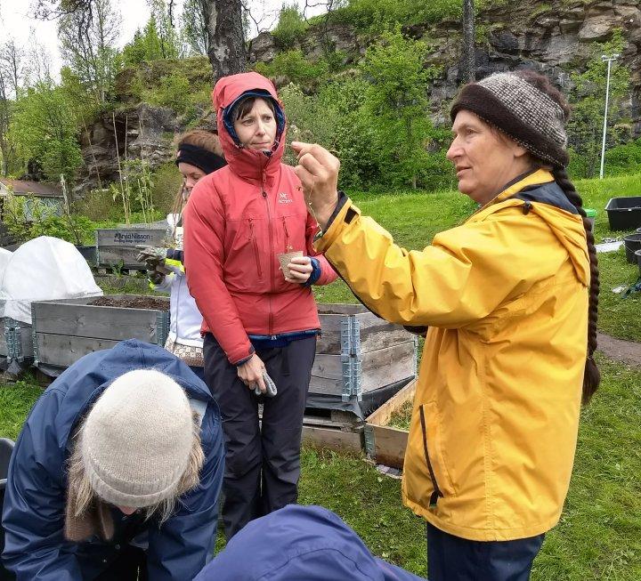 Kirsty McKinnon fra NORSØK gir faglig påfyll til interesserte kursdeltakere. Foto: Liv Solemdal