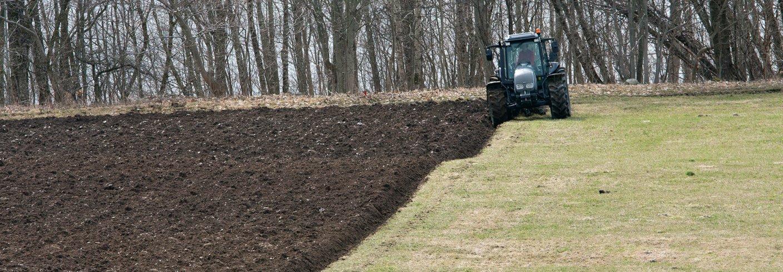 Naken jord øker faren for nitrat-utvasking betydelig, spesielt om det etterfølges av nedbørrike perioder uten plantevekst